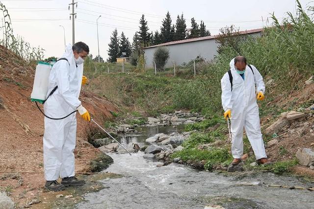 Adana'da sivrisinek ve haşereyle mücadele