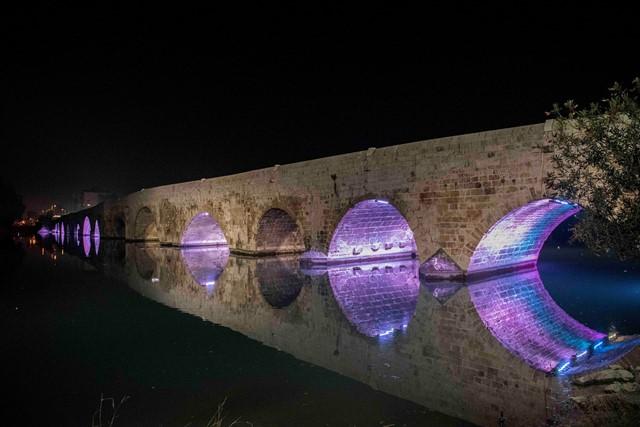 Adana'nın sembol yapıları mor renkle aydınlatıldı