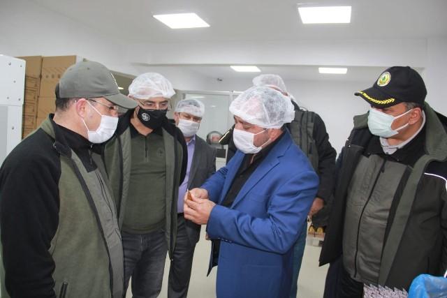 Adana'ya bal ormanları kurulacak