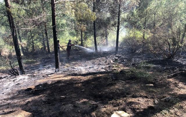 Adana OBM yangınlara karşı hazırlıklarını tamamladı