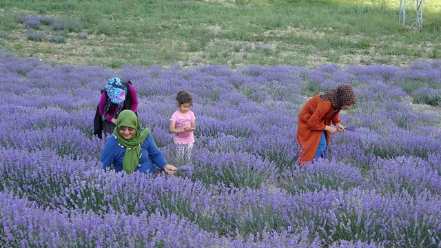 Kadınlar birlik oldu, şimdi o köy kırsal turizmin gözdesi