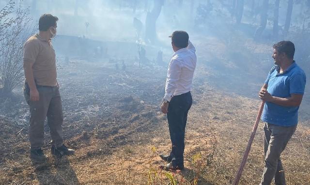 Adana'da çıkan orman yangını büyümeden kontrol altına alındı